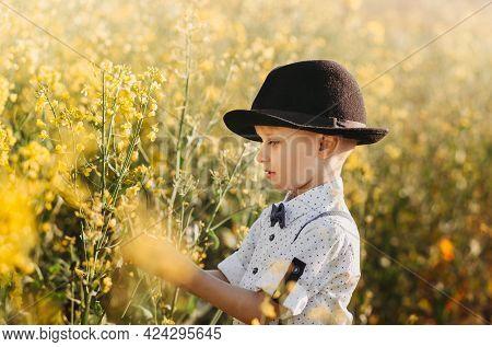 Little Boy In An Oilseed Rape Field With Flowering