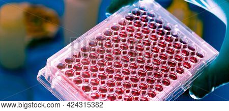 Tubes with genetic samples PCR micro tubes strips