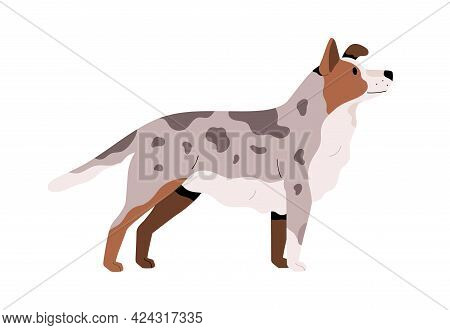 Side View Of Cute Adult Dog. Pretty Doggy With Spotty Fur. Canine Animal With Faithful Look. Flat Ve