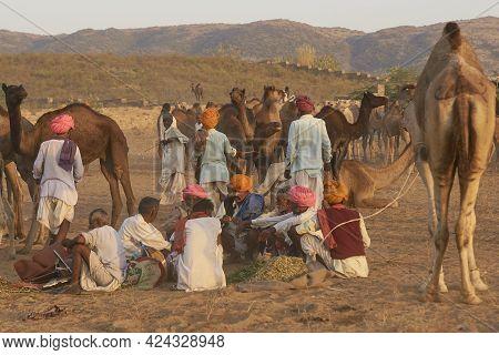 Pushkar, Rajasthan, India - November 6, 2008: Group Of Camel Herders At The Annual Pushkar Fair In R