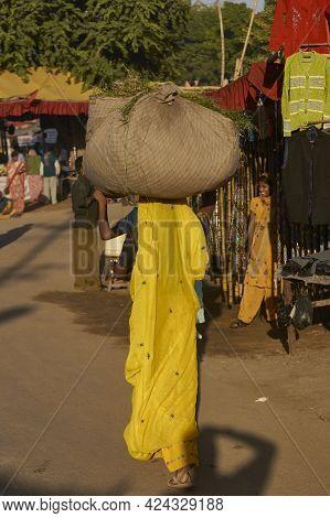 Pushkar, Rajasthan, India - November 8, 2008: Lady Carrying A Large Bundle Through A Street In Pushk