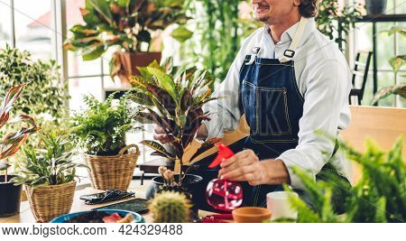 Happy Gardener Senior Old Eldery Man Looking At Young Plant Watering And Gardening With Potted Plant