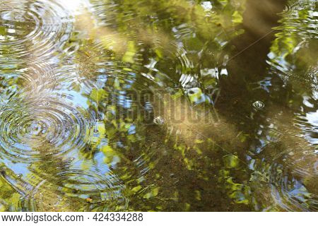 Radial Waves From A Rain On Puddle With Reflecting Of Green Trees And Blue Sky. Water Surface Of Pud
