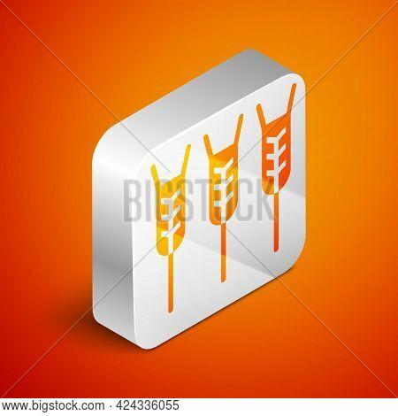 Isometric Cereals Set With Rice, Wheat, Corn, Oats, Rye, Barley Icon Isolated On Orange Background.