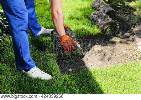 Gardener Laying Grass Sod On Backyard, Closeup