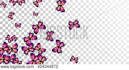 Romantic Purple Butterflies Cartoon Vector Illustration. Spring Pretty Insects. Wild Butterflies Car
