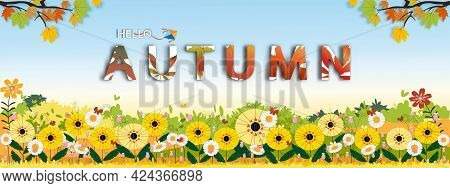 Autumn Background Banner,cute Autumnal Landscape Of Sunflower Field And Butterfly  With Blue Sky Bac