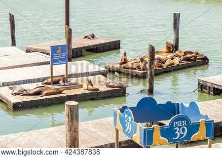 San Francisco, California, Usa - July 24, 2018: The Well-known Pier 39 In San Francisco With Sea Lio