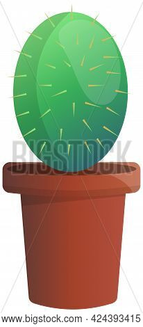 Wild Cactus Green Color Plant In Clay Pot. Desert Flora Grower With Prickly Needles. Succulent Oval
