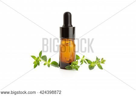 Oregano Essential Oil And Fresh Oregano Leaves Isolated On White Background. Origanum Vulgare Oil