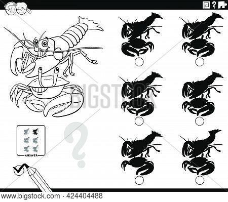 Black And White Cartoon Illustration Of Finding The Shadow Without Differences Educational Game For