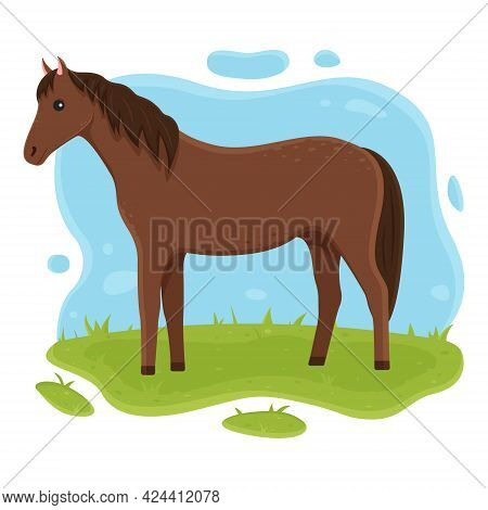 The Horse Is Standing On The Grass. Illustration For Kids. Farm Pet Vector Illustration In Cartoon S