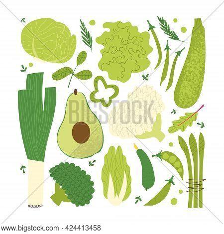 Green Vegetables Set. Flat Hand Drawn Textured Veggies: Lettuce, Asparagus, Avocado, Cucumber.