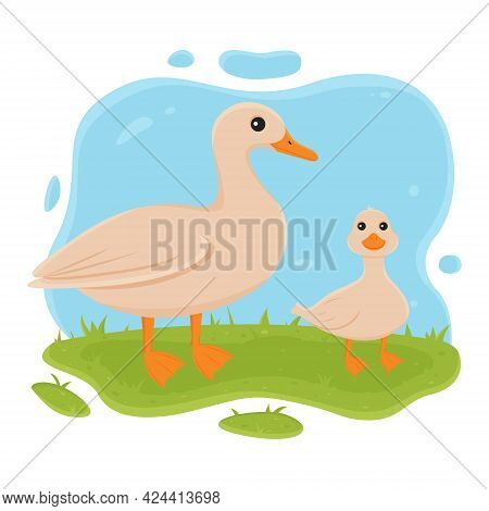 Duck And Duckling Stand On The Grass. Vector Illustration Of Domestic Farm Bird In Cartoon Simple Fl