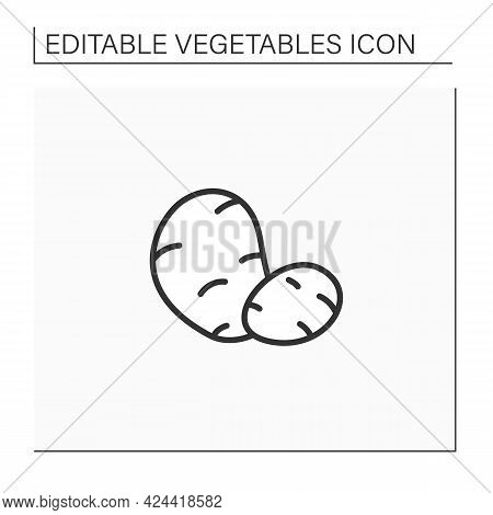 Potato Line Icon. Spuds. Edible Plant. Vegetarian, Healthy Nutrition. Health Benefits. Agriculture C