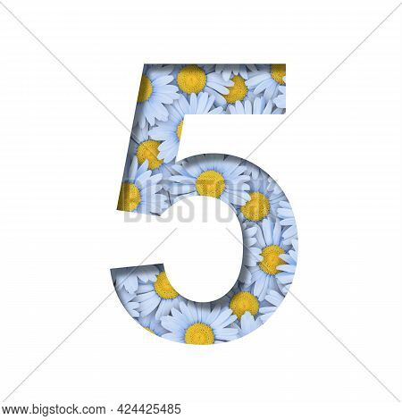 Daisy Flower Font. Digit Five, 5 Is Cut Out Of Paper On The Background Of A Pattern Of Lovely Blue D