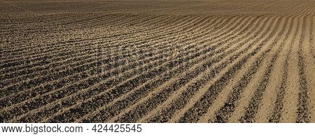 Furrows In The Ground After Plowing As A Background Or Backdrop.