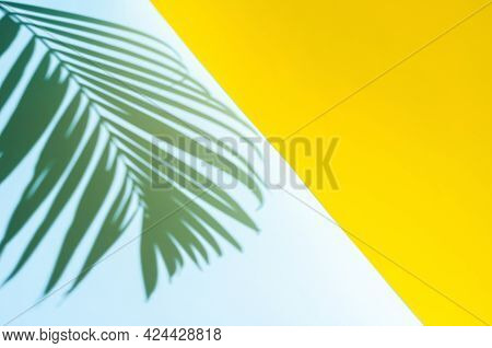 Blurred Focus Of Coconut Leaf Shadow On Blue And Yellow Background. Summer Background Concept.