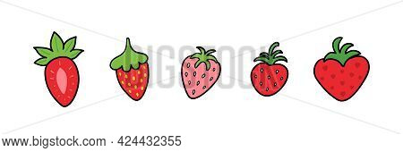 Set, Collection Of Various Doodle Strawberries In Different Sizes And Shapes. Vector Strawberry Icon