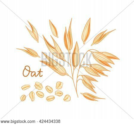Oats Set. Spikelets, Grains And Flakes On A White Background. Cartoon Style. Vector Illustration.