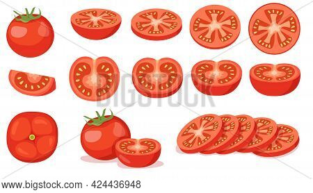 Colorful Set Of Cut And Full Red Tomatoes. Cartoon Vector Illustration. Tomatoes In Different Angles