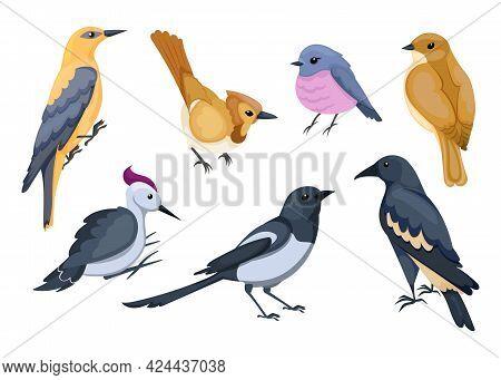 Cute Small Cartoon Birds Vector Illustration Set. Little Sparrow, Woodpecker, Crow, Isolated On Whit