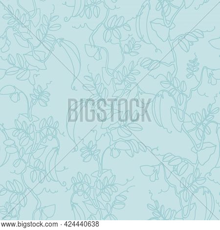 Seamless Pattern. Pea Plant With Pods And Flowers. Vector Illustration, Line Art On Sky Blue Backgro