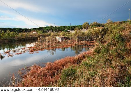 Ravenna, Emilia Romagna, Italy: Landscape Of The Wetland With Fishing Huts In The Nature Reserve Po