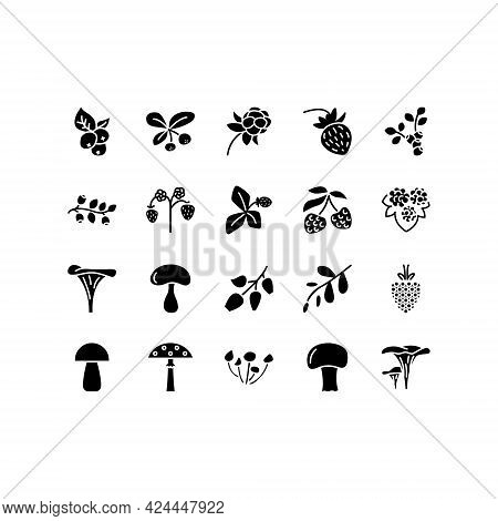 Forest Berries And Mushroom Flat Line Icons Set. Fresh Berries Raspberry Lingonberry Blueberry Black