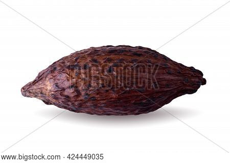 Cocoa Pod And Beans Isolated On A White Background.