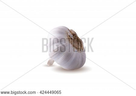 Close Up Raw Garlic Isolated On A White Background