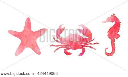 Set Of Three Aquarelle Red Sea Animals On White Background Hand-drawn Digital Illustration: Starfish
