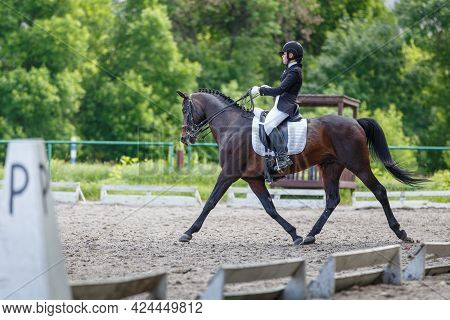 Young Sportswoman Riding Horse On Dressage Test