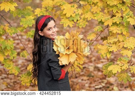 Autumn Style. Kid In Park. Cheerful Girl With Yellow Maple Leaves. Happy Kid Enjoy Fall Weather. Sma