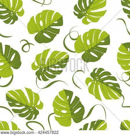 Monstera Leaf Pattern, Palm Leaf Seamless Background. Vector Illustration