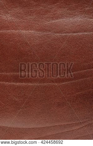Raw Brown Leather Surface