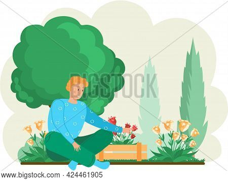 Guy Gardening Plants On Backyard, Flowers On Beautiful Flower Bed, Enjoying Tulips In Spring Garden.