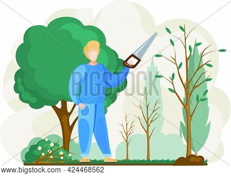 Gardener Cuts Tree. Pruning Bushes And Garden Maintenance. Guy Sawing Plant With Hand Saw. Man Cuts