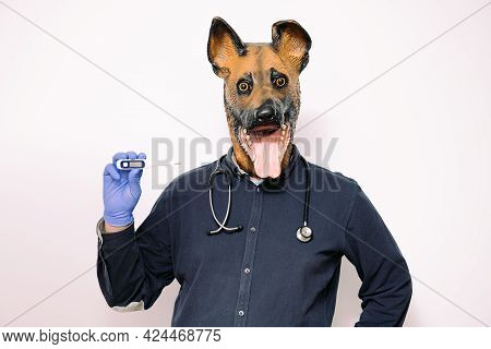 Person With A Dog Mask, Latex Gloves And A Stethoscope On The Neck Shows A Digital Thermometer On Wh