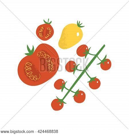 Tomato Flat Hand Drawn Set. Cherry Tomatoes, Yellow And Red Vegetables.