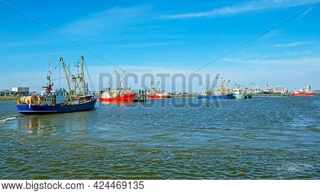 Fishing boats in the harbor from Lauwersoog in the Netherlands