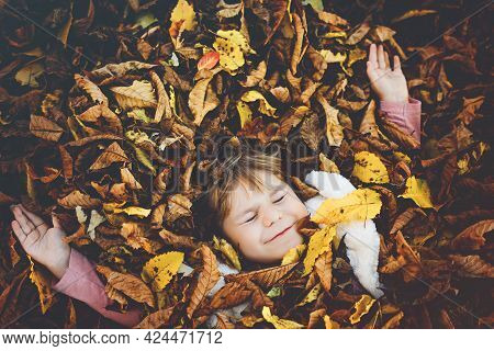 Fall Portrait Of Little Toddler Girl In Autumn Park On Warm October Day With Oak And Maple Leaf. Chi