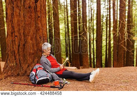 Older Woman Sitting On The Ground And Leaning Against A Tree Reading A Book While Resting During A H