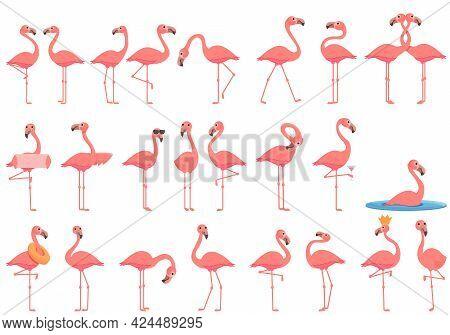 Flamingo Icons Set. Cartoon Set Of Flamingo Vector Icons For Web Design