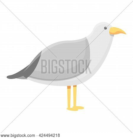Seagull Icon. Cartoon Of Seagull Vector Icon For Web Design Isolated On White Background