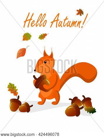 Autumn Card With Squirrel And Acorns. Vector Illustration With Place For Text. For Postcards, Invita