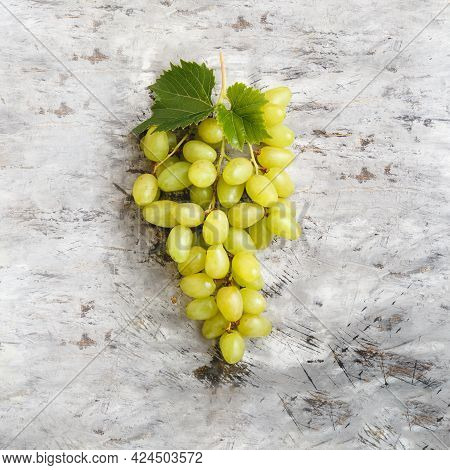Large Ripe Green Riesling Grape Grone. Ripe Juicy Grapes With Vine Foliage On Light Gray Concrete Ba