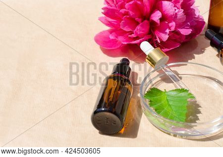 Beauty Product Concept. Glass Bottles, A Petri Dish And A Peony Flower In The Sun. Cosmetic Natural