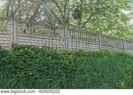 A Long Concrete Wall Of A Gray Fence Overgrown With Green Grass In The Vegetation On The Street