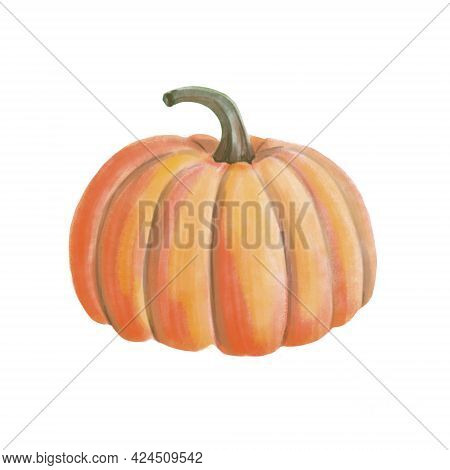 Watercolor Orange Pumpkin. Isolated Object On White Background. Vintage Hand Drawn Watercolor Illust